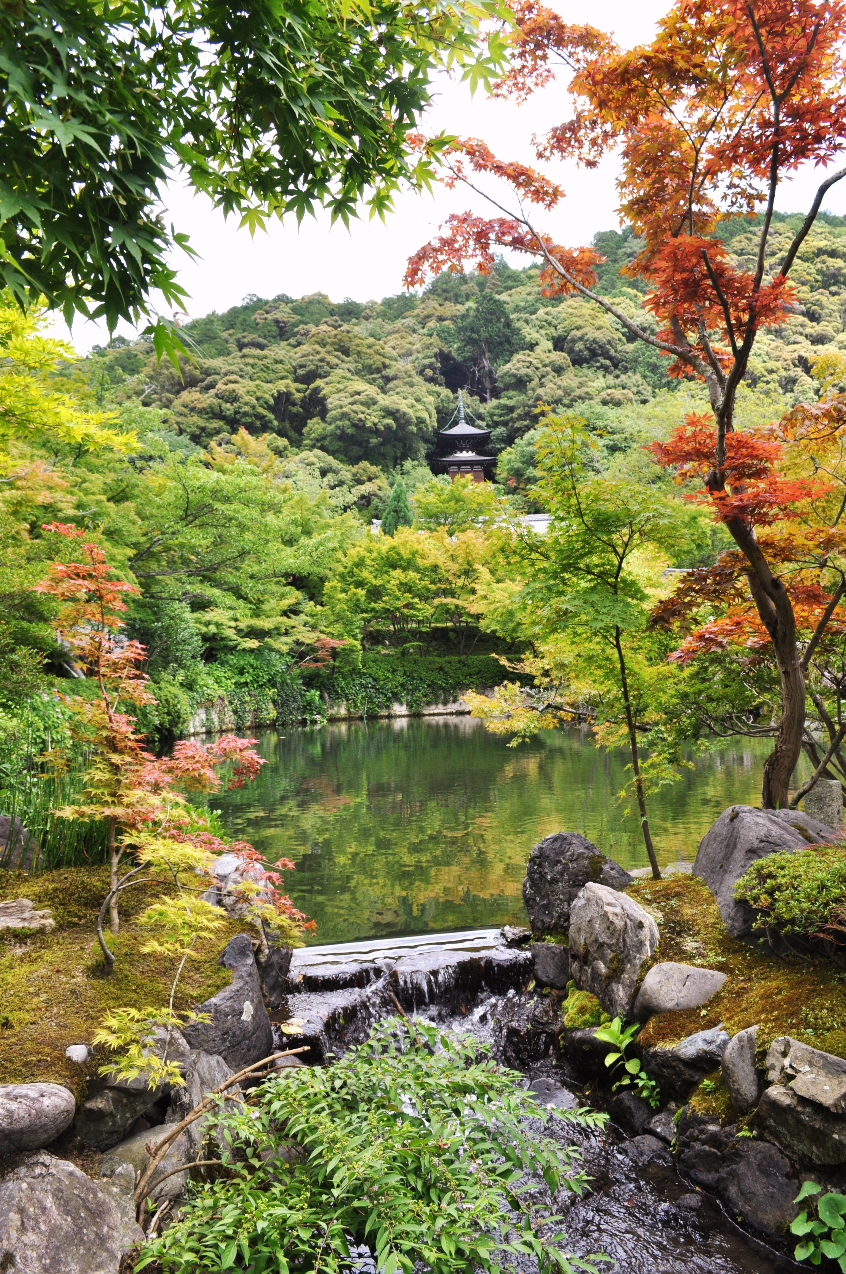 Kyoto (87)